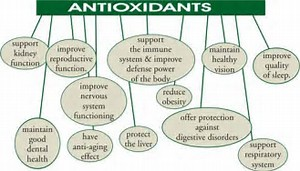 Go To Products Antioxidants.