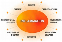 Go To Products Healthy Aging and Inflammation.